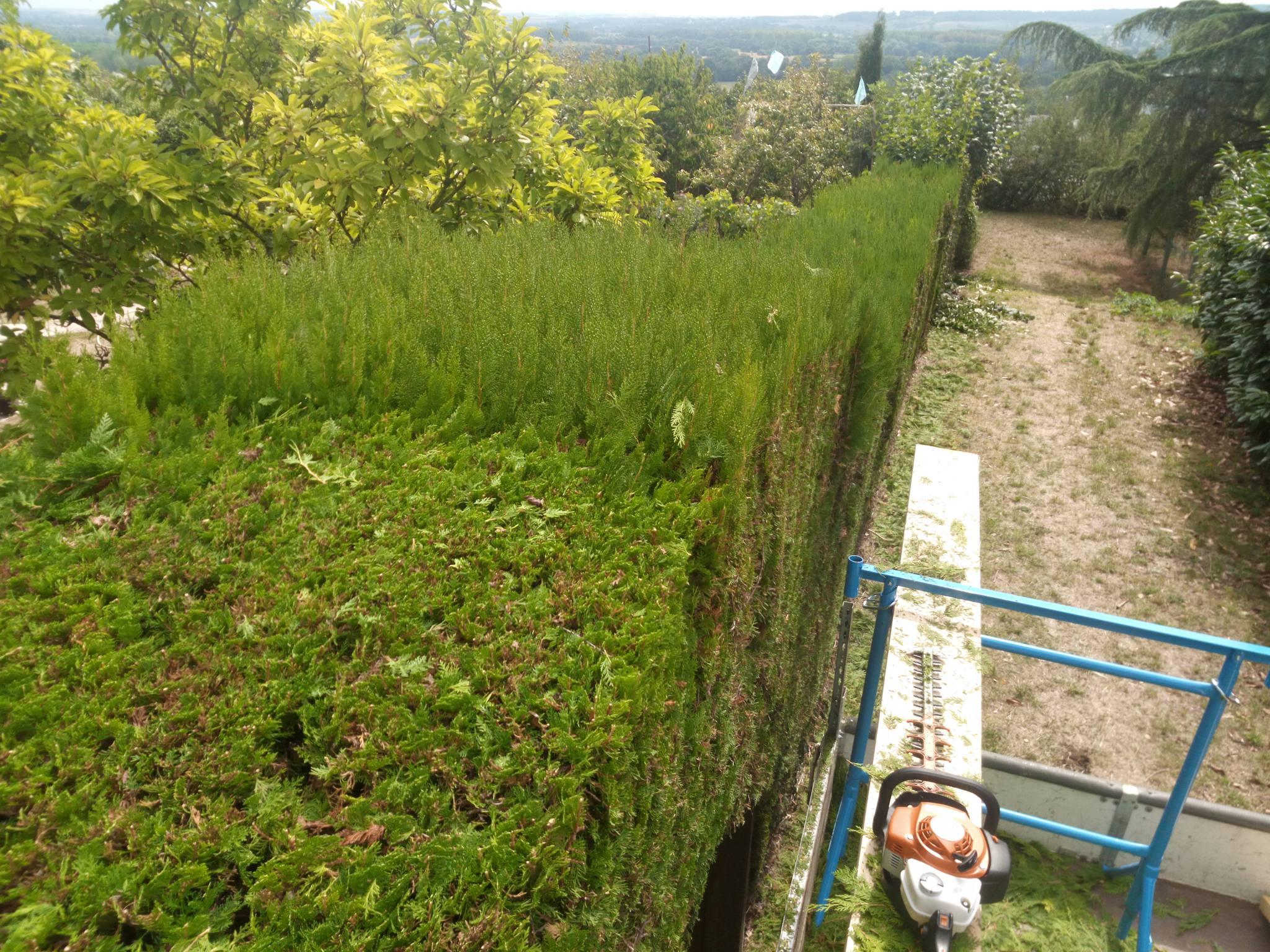 Paysagiste Indre Et Loire création d'espaces verts - création d'espaces verts